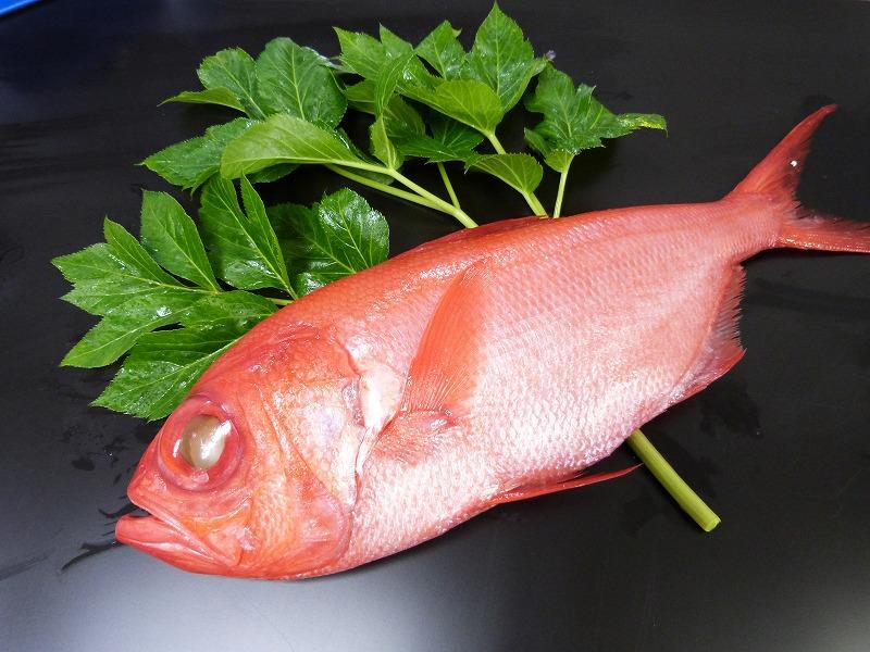 冷凍・金目鯛1匹